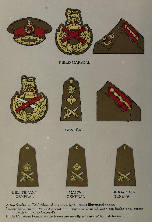 badges of rank british army. Rank badges of the Canadian