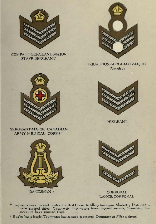 [Image: 18_ranks_private_to_sergeant-major.jpg]