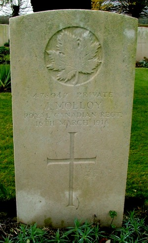 Commonwealth War Graves Commission Gravestone of Pte Joseph Molloy, located in the Meteren Military Cemetery, Nord, France. Photo by