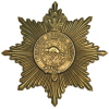Infantry School Corps star badge.